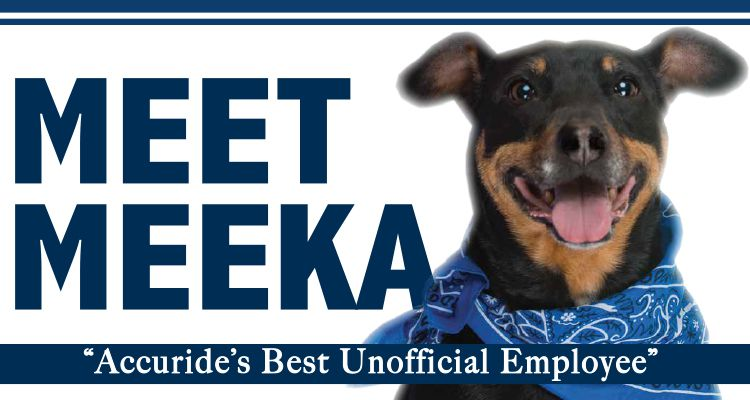 Meeka Accuride Unofficial Employee